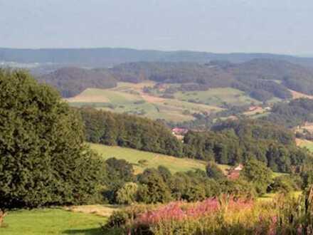 Moderner und rentabler Hotelbetrieb mit 60 Betten im Odenwald