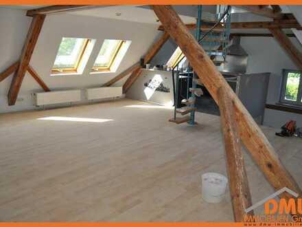 Sanierte und renovierte 1,5 ZKB, EBK, TL Bad m Du, Gäste-WC, Balkon