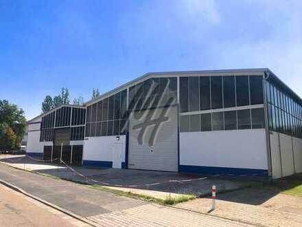 KEINE PROVISION ✓ IM ALLEINAUFTRAG ✓ Lager (900 m²) & Büro-/Sozial (150 m²) zu vermieten