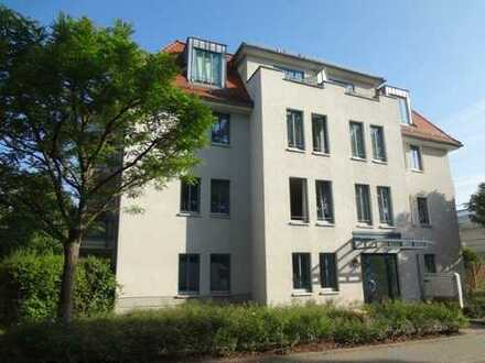 Sehr schöne und geräumige 1-Raum-Erdgeschoss-Wohnung mit Terrasse in Dresden-Laubegast