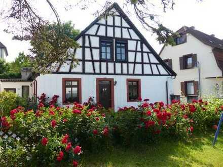 Gemütliches Fachwerkhaus mit Hof und Garten in Ober-Ingelheim