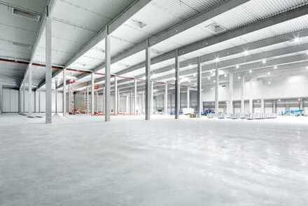 """""""BAUMÜLLER & CO."""" Neubau - Industriehalle"""
