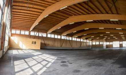 Produktionshalle, inklusive Büro, Sozialräume und Glasfasernetz, ab Januar 2020 zu vermieten