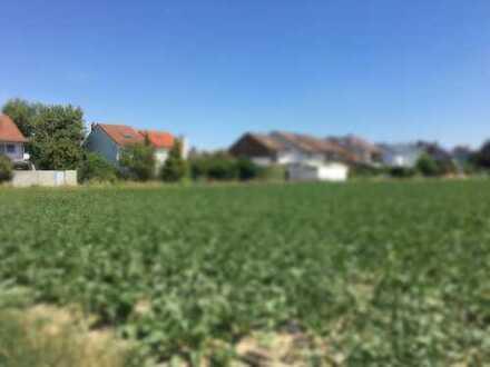 Bieterverfahren! Traum-Grundstück zur Reihenhausbebauung in Feldrandlage im Pfalzring