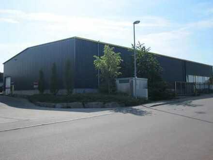 Kalthalle an B19 in Kupfer zu vermieten