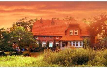 Historische Landhausvilla am See in absoluter Alleinlage , Wesermarsch (Kreis), Jade