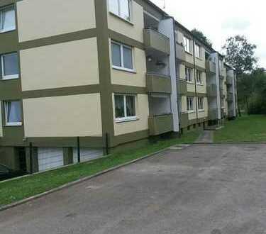 helle renovierte 3-Zi-Wohnung mit Balkon