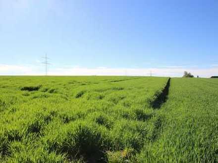 Landwirtschaftliche Fläche in Berghülen