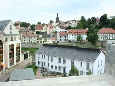 Traumhafter Blick - Traumhafte Wohnung - Traumhafter Altbau - Krumbholzvilla