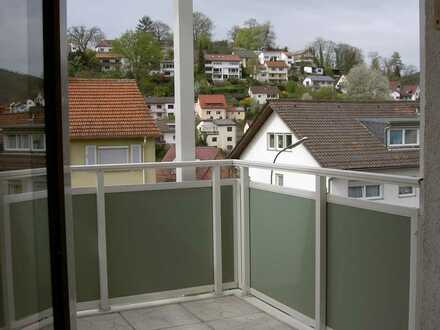 1,5 - Zi-Appartement in NECKARGEMÜND - ideale Singlewohnung !