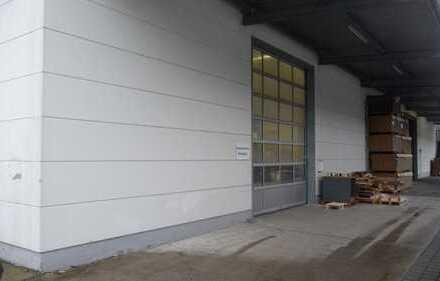 +++ Eine Halle der Superlative in zeitgemäßer Architektur mit vielseitigen Verwendungsmöglichkeiten+