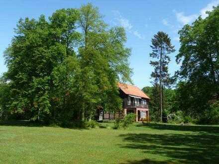 Großzügige 5 Zi-Wohnung mit herrlichen Blick in die Natur
