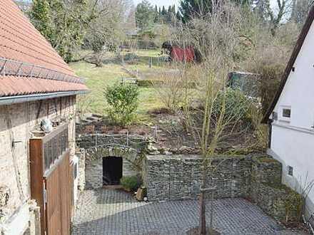 Schöne renovierte 2 Zimmer Wohnung mit EBK, Kaminofen und Gartennutzung in Kelkheim-Hornau