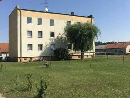 Schöne vier Zimmer Wohnung in Havelland (Kreis), Havelaue
