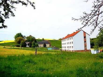 Idyllisch im Grünen Wohnen, schöne 3 Zimmer Wohnung, frisch saniert