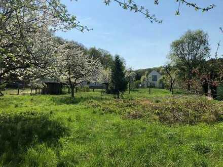 Großzügiges Baugrundstück inmitten alter Obstbäume - Bauträgerfrei - Vollerschlossen