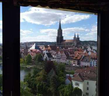 Schönes 1-Zimmer-Appartement mit Loggia und Panoramablick