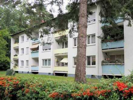 Family Time - Willkommen in der Waldstadt