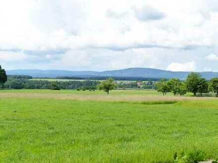 Ruhe & Idylle - Tolles Grundstück mit Wald & Wiesen vor der Haustüre
