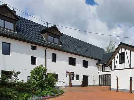 Homeoffice im Grünen. Erstbezug nach Sanierung mit EBK: exklusive 2,5-Zimmer-Wohnung in Ziegenhain