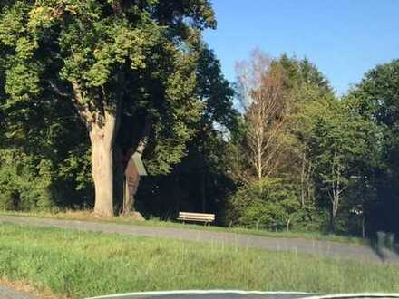 Waldgrundstück in Kronach, Ziegelerden zu verkaufen