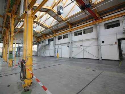 PROVISIONSFREI | KRANBAHN: ca. 3.500 qm Produktion | 19x ebenerdig | 5,80-14,70 m UKB