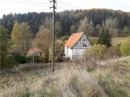 RE/MAX - Grundstück mit altem Baumbestand in sonniger Lage