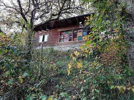 Freizeitgrundstück mit Holzhaus inkl. Bienenhaus