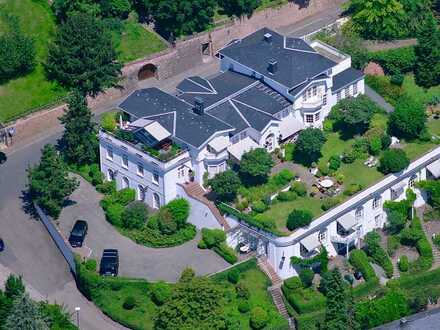 Stilvolle, geräumige und neuwertige 2-Zimmer-Wohnung mit Terrasse und Einbauküche in Heidelberg