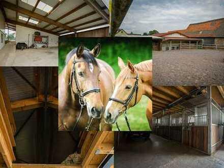 Pferdeliebhaber aufgepasst!  Ihr Traum vom eigenen Reiterhof wartet auf Sie in Helmstadt.