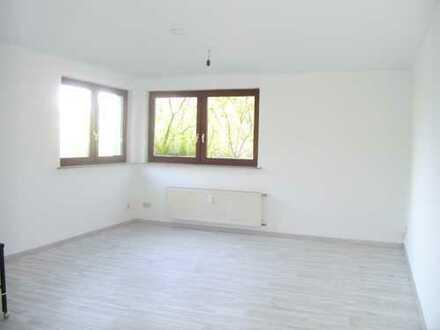 Modernisierte EG-Wohnung mit einem Zimmer und Balkon in Mayen-Koblenz (Kreis)