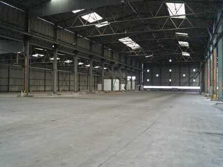 Lagerhalle (4.800 m²) im Hafengebiet von  56626 Andernach