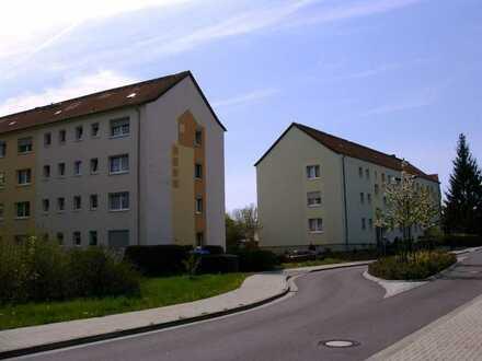 Schöne sanierte 3-Zimmer-Wohnung