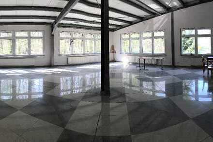 Büro- / Praxisräume (ca. 320 m²), gehobene Ausstattung, in 55743 Kirschweiler zu vermieten