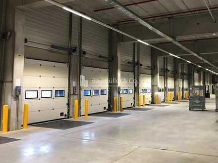 """""""BAUMÜLLER & CO."""" - 10.000 m² Hallenfläche - SOFORT verfügbar - Logistik-Neubau - BAB-Anbindung"""