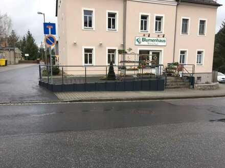 Neuwertige 2-Raum-Wohnung mit Einbauküche und Elektrogeräten in Ottendorf-Okrilla
