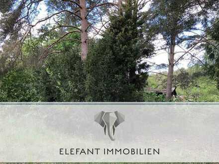Baugrundstück in Michendorf | Ortsrand | großzügig | bahnnah | im B-Plan Gebiet