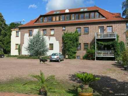 EFH & MFH & Gew. auf 9.009 m² in Halle