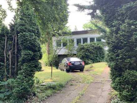 Wunderschöner Bungalow in extrem ruhiger Lage (Sackgasse) und tollem Garten in Hamburg Sasel