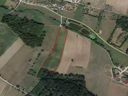 Zwei Landwirtschaftliche Nutzflächen zu verkaufen