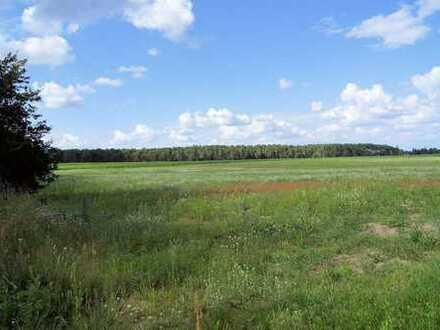 Ca. 15 ha Landwirtschaftsflächen unterschiedlicher Nutzungsart in der Gemeinde 14797 Kloster Lehnin