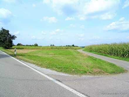 Schönes Wiesengrundstück zur landwirtschaftlichen Nutzung!