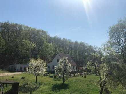 Grundstück neu erschlossen - Wohnbaugrundstück mit altem Obstbaumbestand - Bauträgerfrei