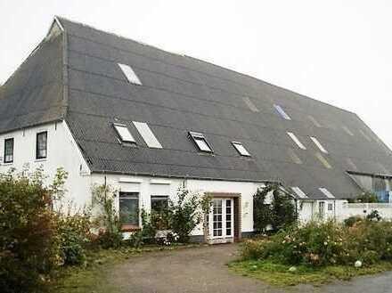 Modernisierter Resthof mit viel Wohnraum, Platz für Pferde und 4 ha Weideland