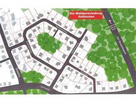 Gallinchen - Waldparksiedlung -
