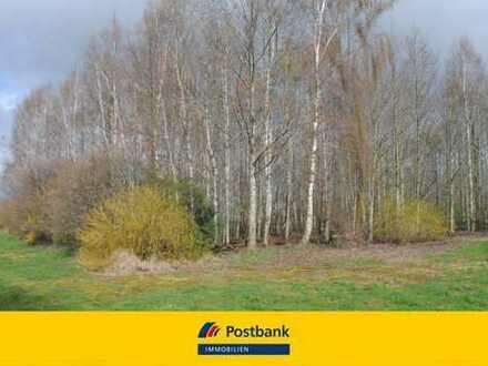 RESERVIERT !!! Landwirtschaftliche Fläche mit Baumbestand