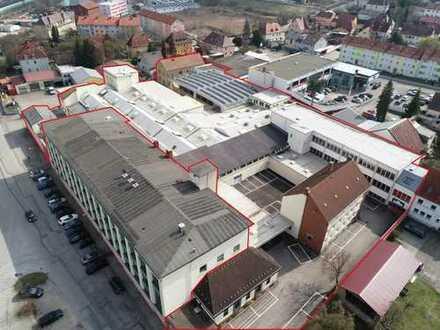 Gewerbepark mit Wohnen, Verwaltung und Lager-/ Produktionshallen
