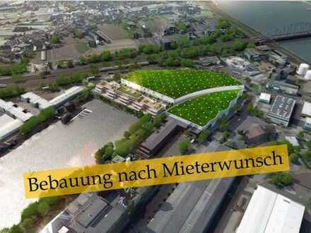 3.000-6.000 m² Freifläche/Logistikfläche im Düsseldorfer Hafen zu vermieten