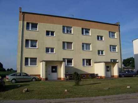 ***RENOVIERTE 3-Raum Wohnung im Erdgeschoß mit Garten***