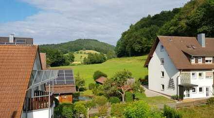 DG-Wohnung in Gundelfingen-Wildtal mit Aussicht ins Wildtal und zum Rebberg